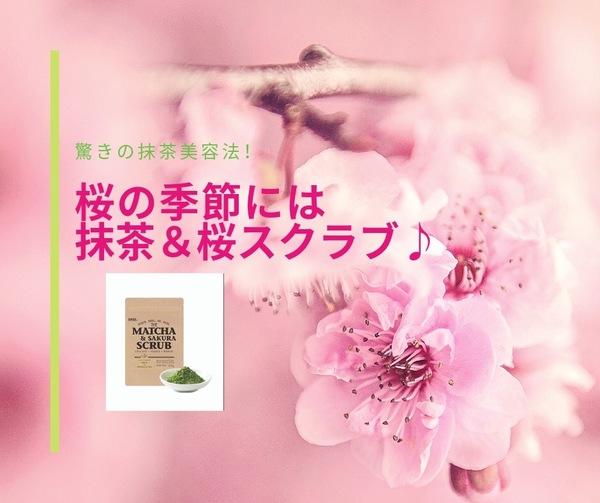 抹茶&桜スクラブの成分・桜の葉エキスに期待できる事?